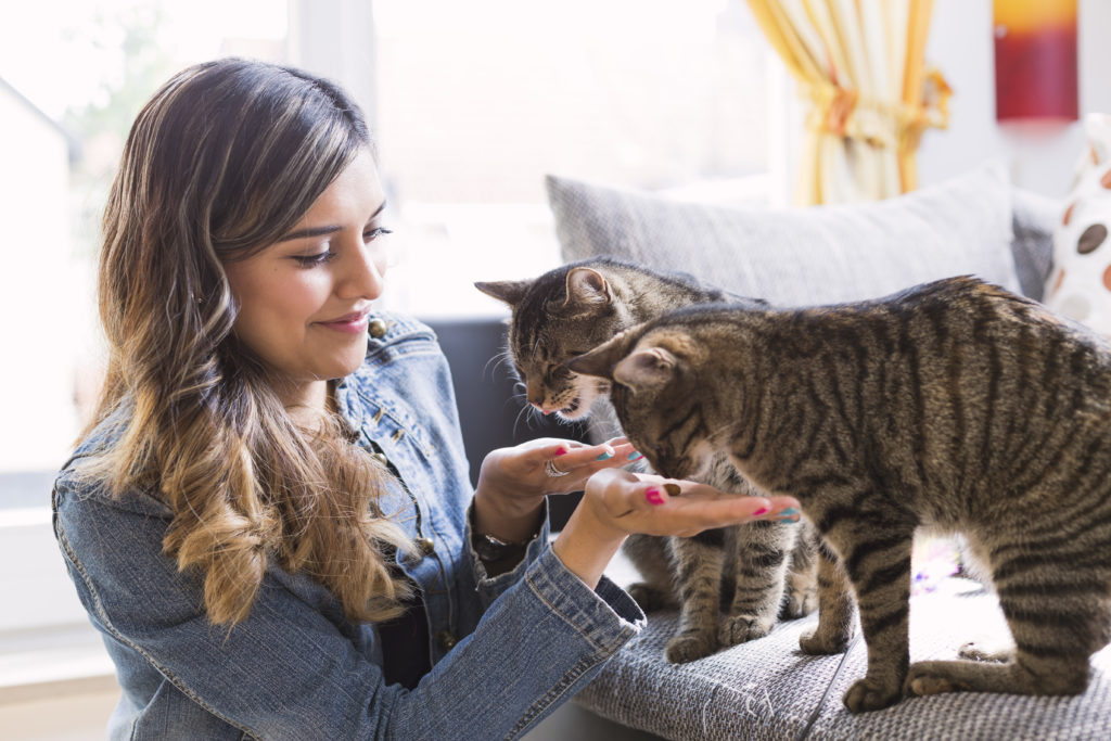 Young woman smiling and feeding her cats.